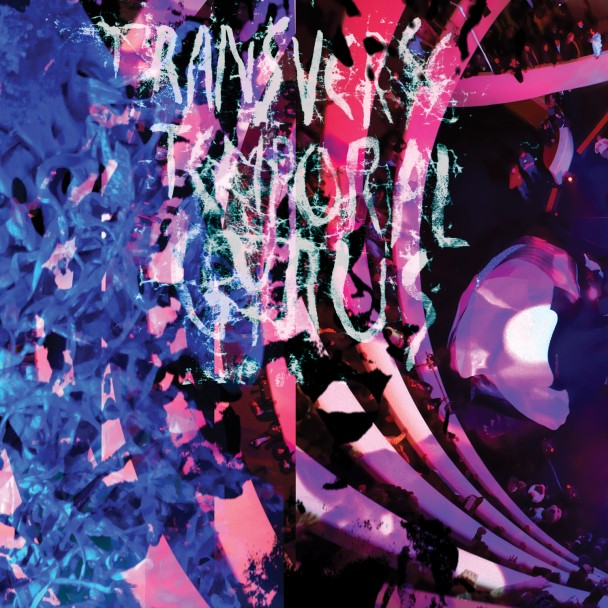 "Animal Collective Release new LP, ""Transverse Temporal Gyrus"""