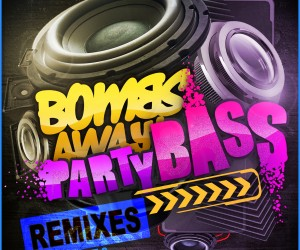 Bombs Away feat. The Twins - Party Bass (Tenzin Remix)