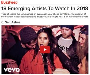 Salt Ashes Featured on BuzzFeed 18 Emerging Artists To Watch In 2018