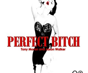 "Tony Moran & Jason Walker Release New Collaborative Single ""Perfect Bitch"""