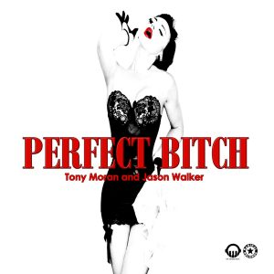 Tony Moran & Jason Walker - Perfect Bitch - Cover Art