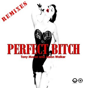 Perfect Bitch (Remixes) - Cover Art