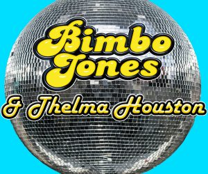 Bimbo Jones & Thelma Houston - Turn Your World Around (Remixes)