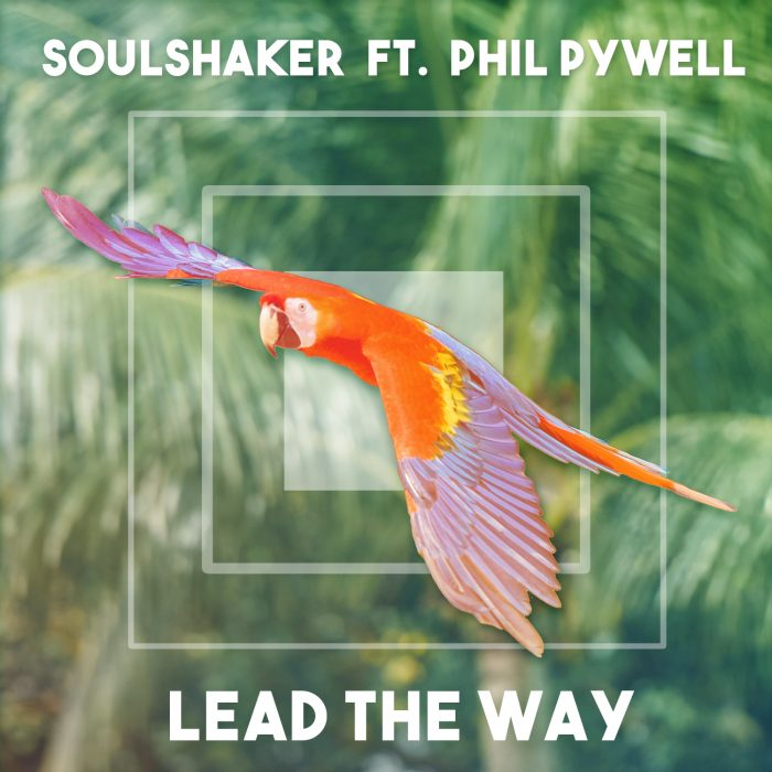 Soulshaker - Lead the Way (feat. Phil Pywell) - Cover Art