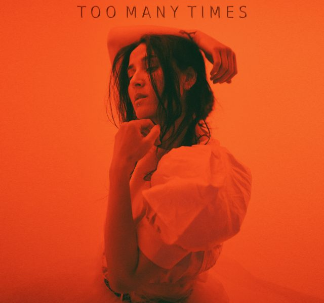 Salt Ashes - Too Many Times - Cover Art